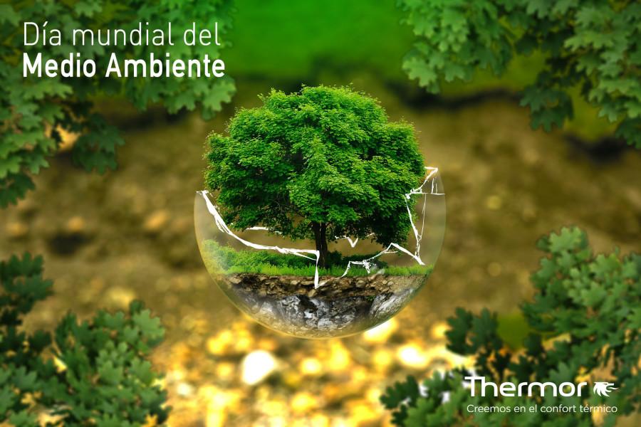 dia-mundial-medio-ambiente-thermor
